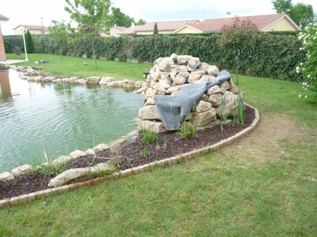 Mon bassin - Page 3 P1130626