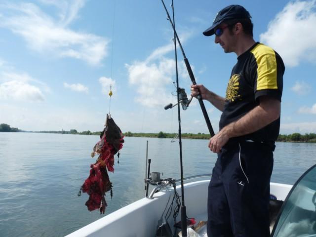 Enfin ça pêche Photo_20