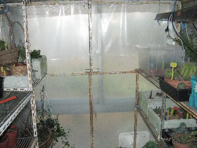 hivernage 2009 Ensemb10