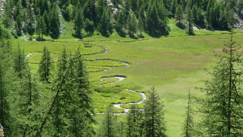 Randonnée au Parc National du Mercantour P1010214