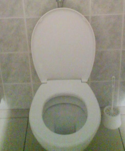 a qui appartiennent ces toilettes? - Page 3 Dsc01310