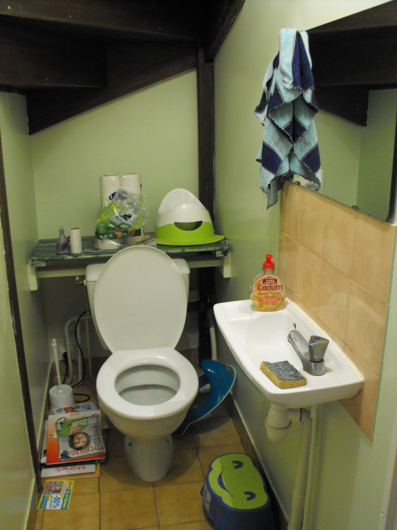 a qui appartiennent ces toilettes? - Page 3 Dscf1010