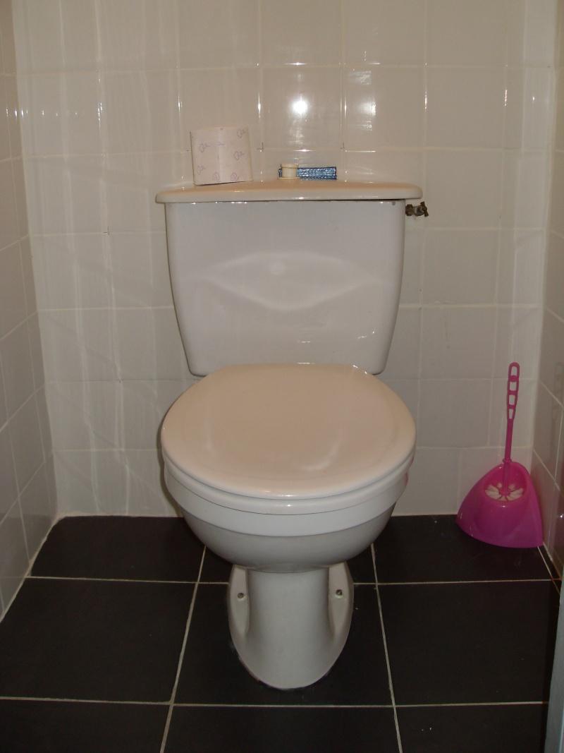 a qui appartiennent ces toilettes? - Page 3 Sdc14310