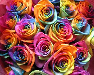 bon anniversaire nanie Rose_a10