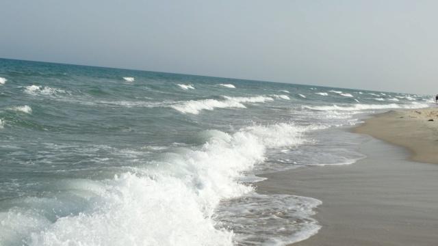 LA TUNISIE 34103310