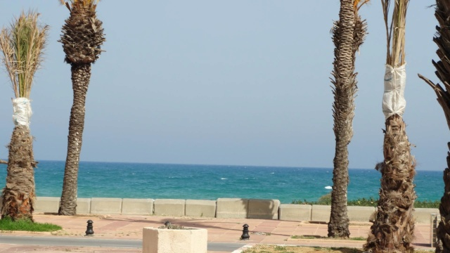 LA TUNISIE 34162010