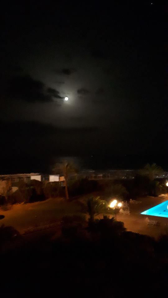 LA TUNISIE 34199510