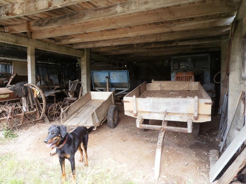 Photographiez des tracteurs ! P6200216