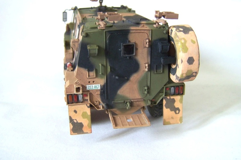 ASLAV et Bushmaster - Page 2 Bushma19