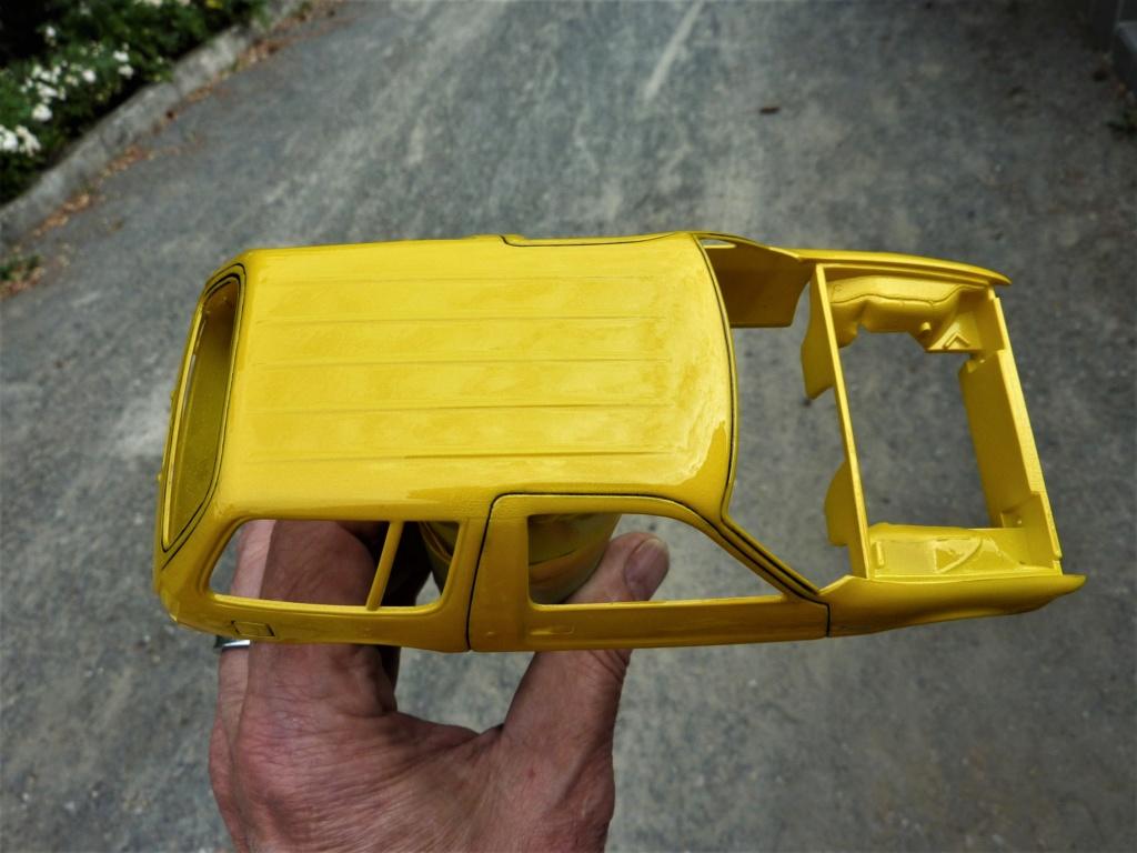 Projet amc pacer wagon 77 P1470632
