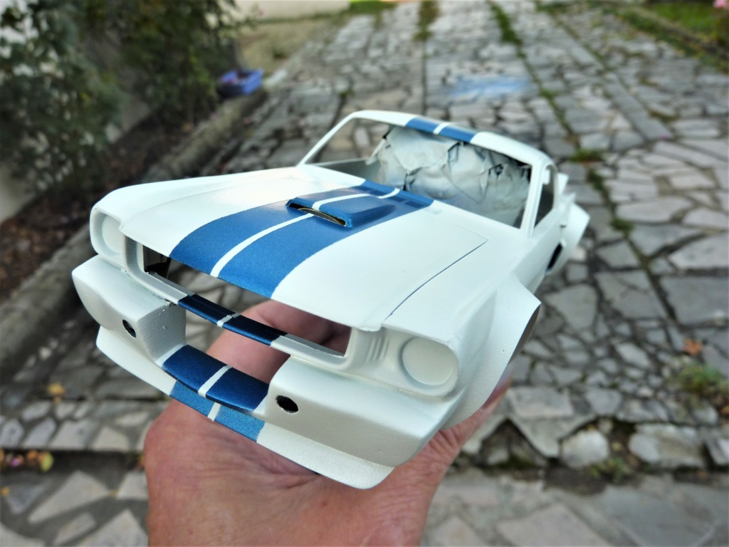 Mustang gt 350 scca [TERMINE] - Page 3 P1480355