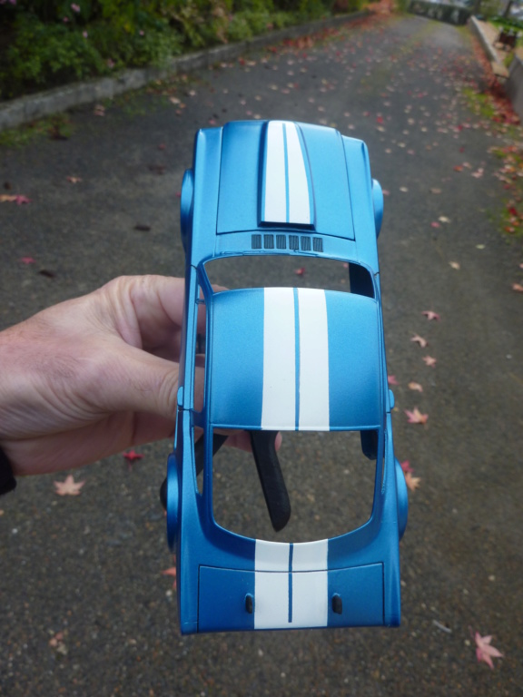 Projet 2eme Mustang gt 350 version racing fictive [TERMINE] - Page 2 P1480556