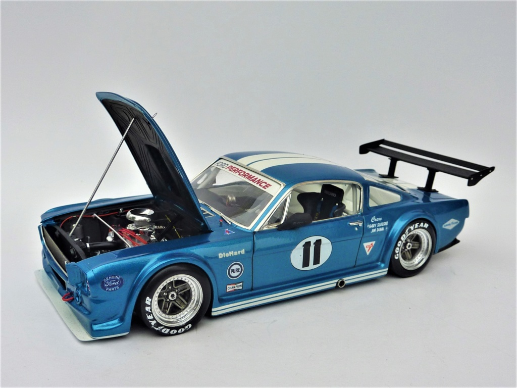 Projet 2eme Mustang gt 350 version racing fictive [TERMINE] - Page 3 P1480617