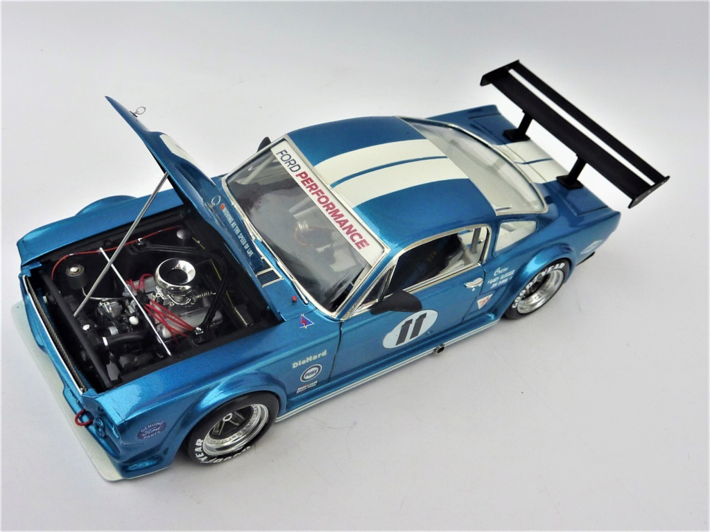 Projet 2eme Mustang gt 350 version racing fictive [TERMINE] - Page 3 P1480618