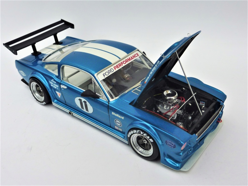 Projet 2eme Mustang gt 350 version racing fictive [TERMINE] - Page 3 P1480619