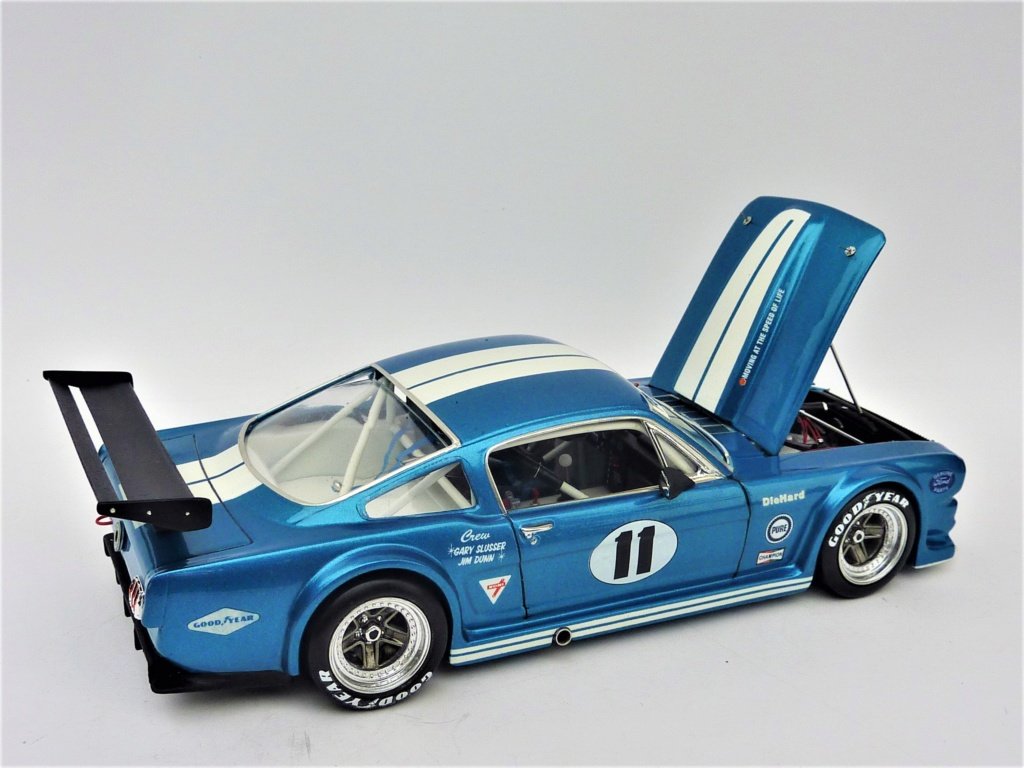 Projet 2eme Mustang gt 350 version racing fictive [TERMINE] - Page 3 P1480622