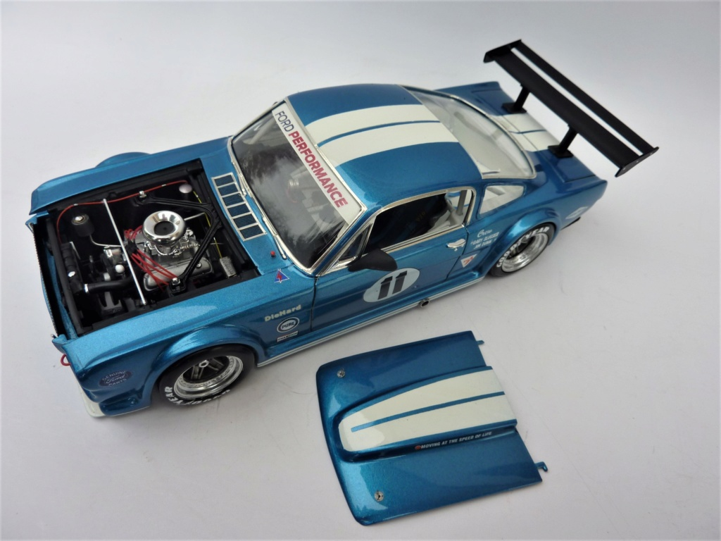 Projet 2eme Mustang gt 350 version racing fictive [TERMINE] - Page 3 P1480632