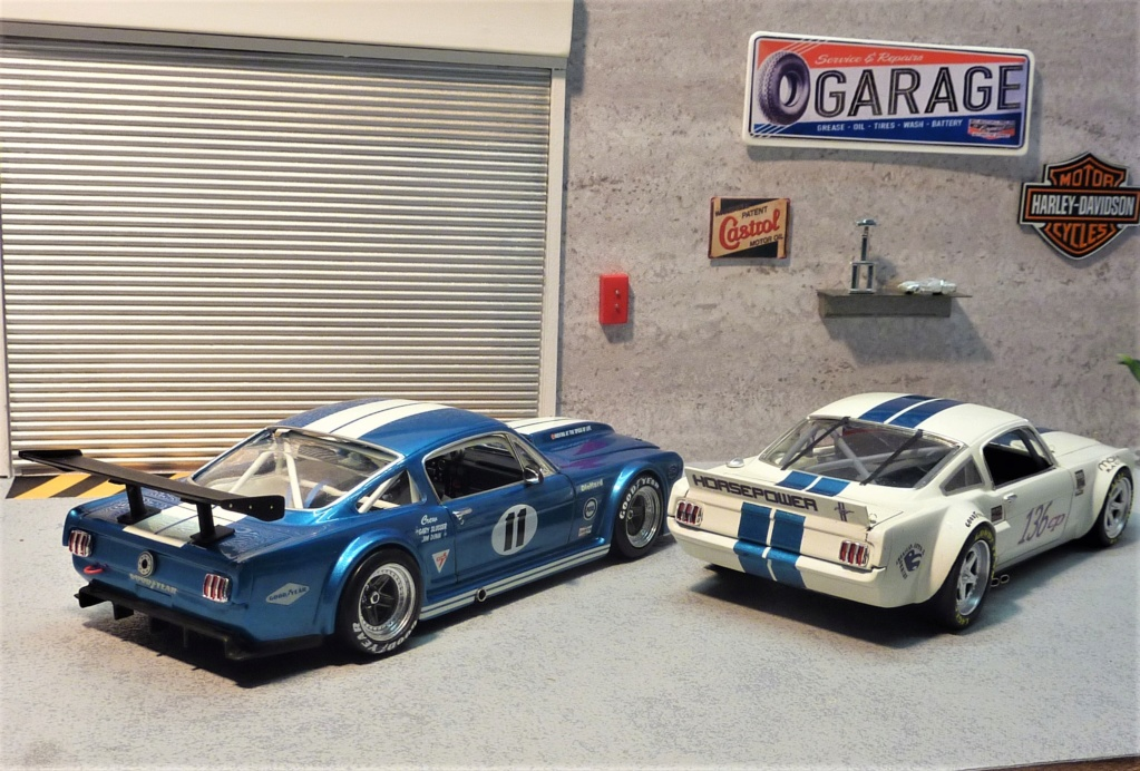 Projet 2eme Mustang gt 350 version racing fictive [TERMINE] - Page 3 P1480641
