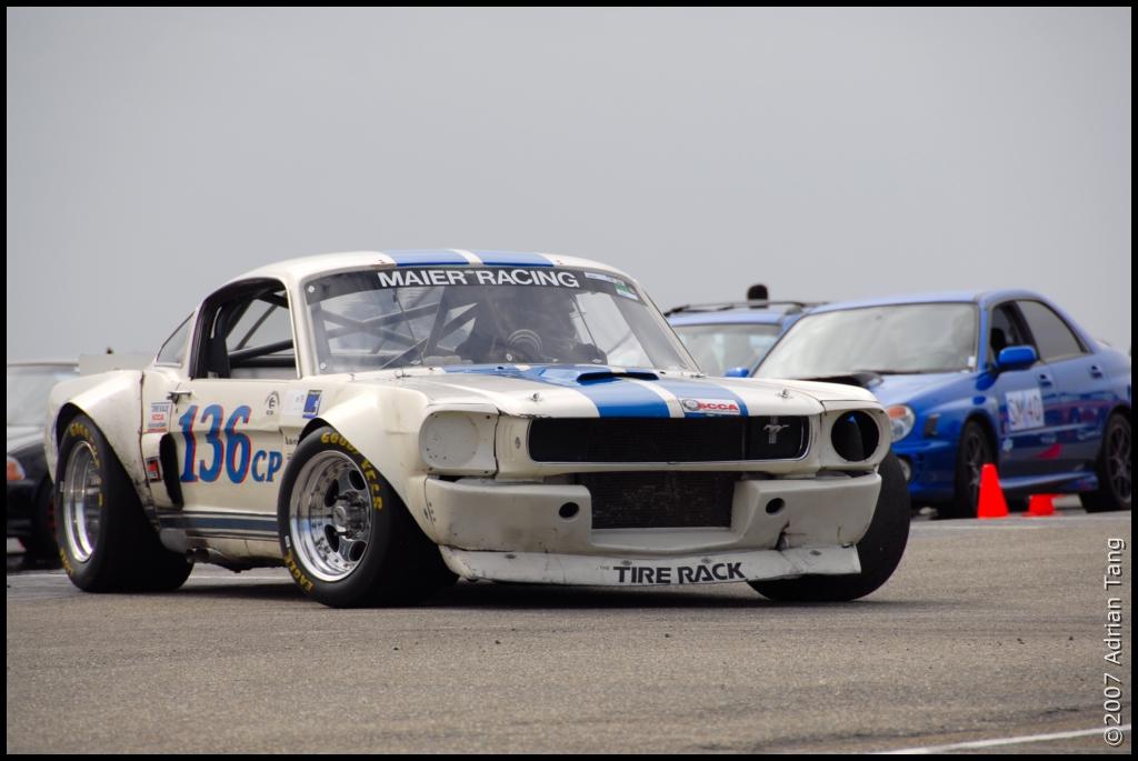 Mustang gt 350 scca [TERMINE] Ww126-10