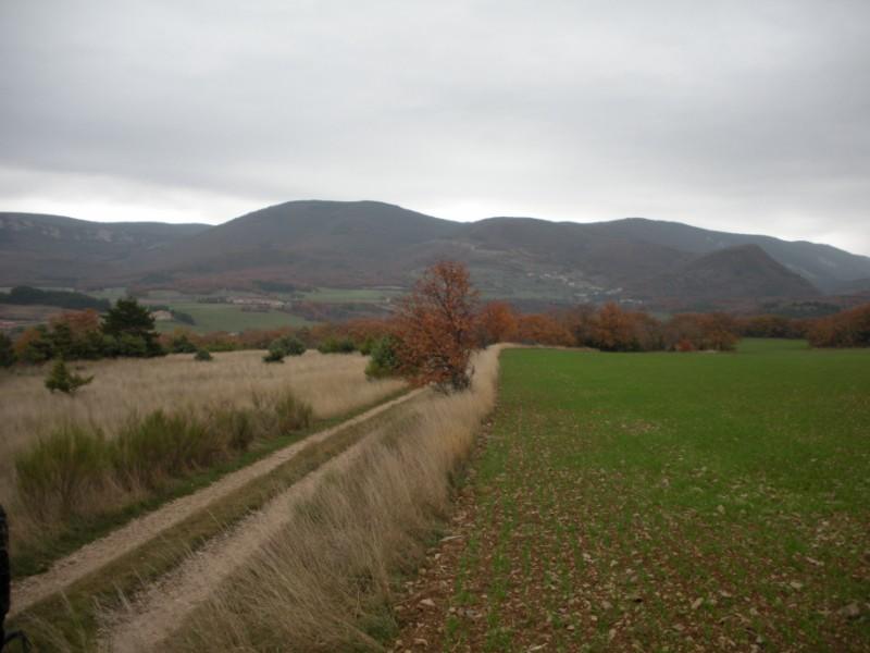 Sortie dans la Drôme le 21 ou 22 novembre 01210