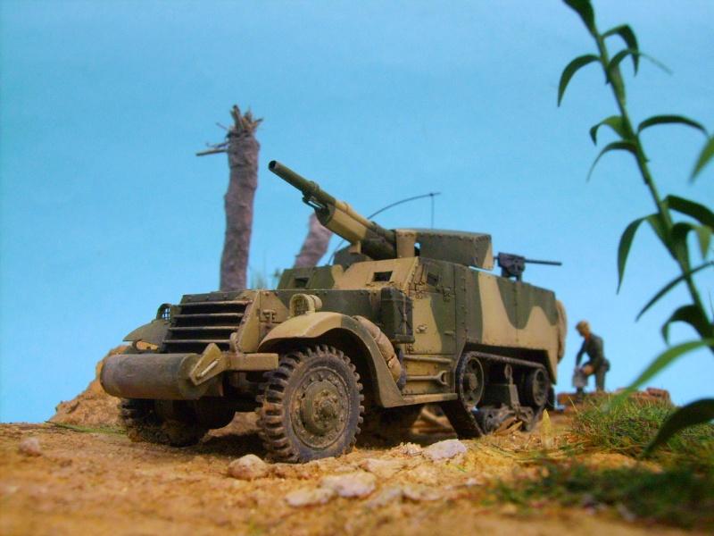 M3 75 mm pacifique 1/72 M30611