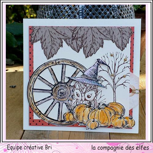 Cartes créatives d'Octobre. Owl_au10