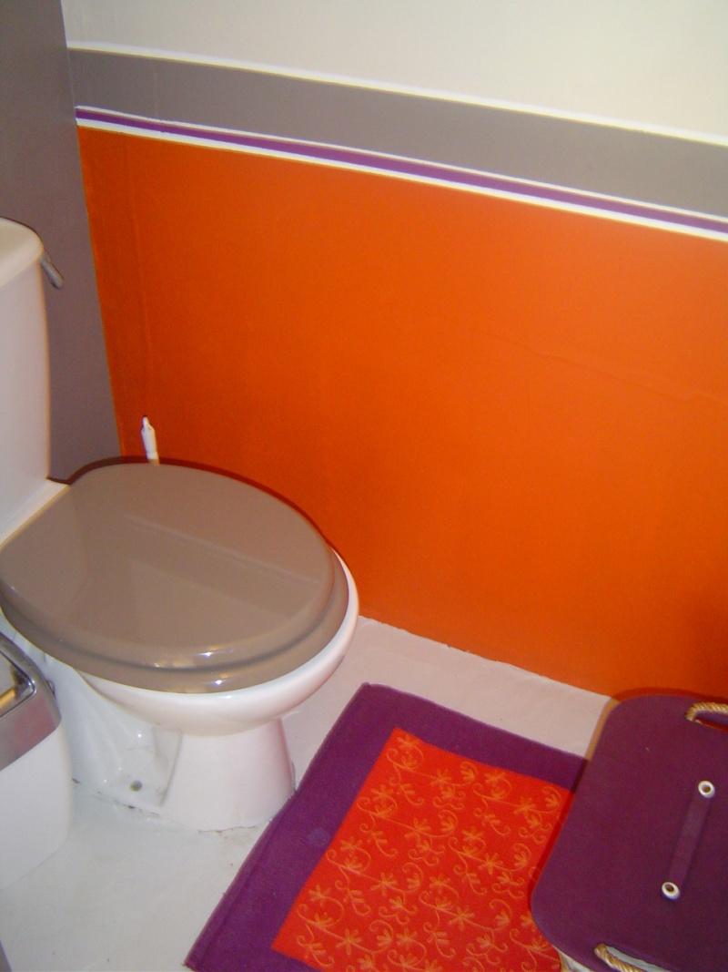 Projet WC Wc510
