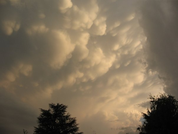 Le Cumulus Mammatus [EXCEPTIONNEL] Nuage11