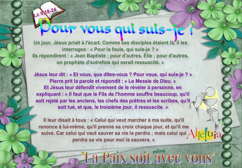 """Dimanche 23 juin 2013 12ème du Temps Ordinaire """"Pour vous qui suis-je?"""" Pizap_43"""