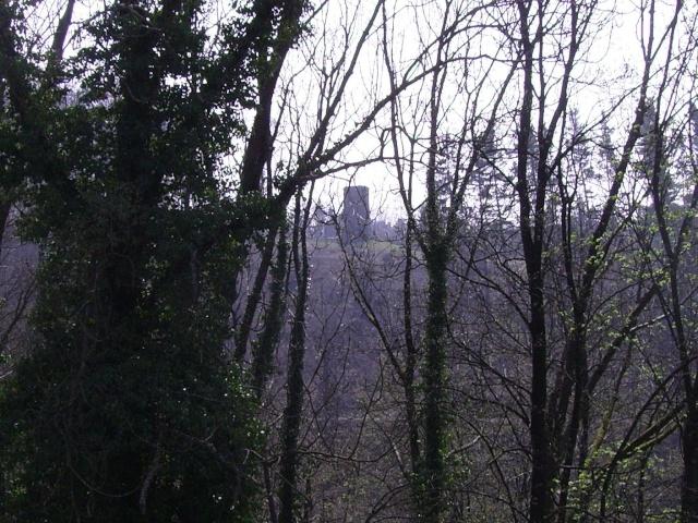 Fruehlingsspaziergang-Schloss Burg an der Wupper. Sb1410