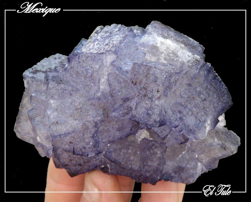 Fluorite mauve du Mexique Fluo3_12