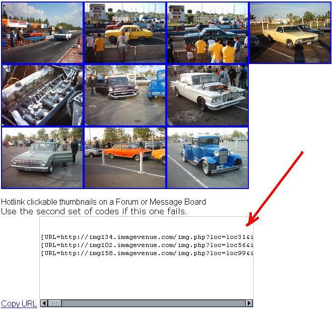 Como poner Fotos en el foro Imagev12