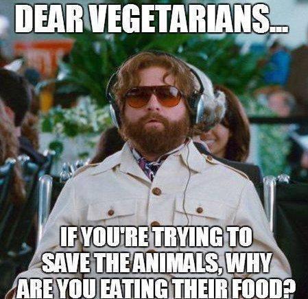 Dear Vegetarians.... Veggie10