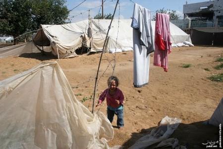 عن أهل غزة.... Gaza310