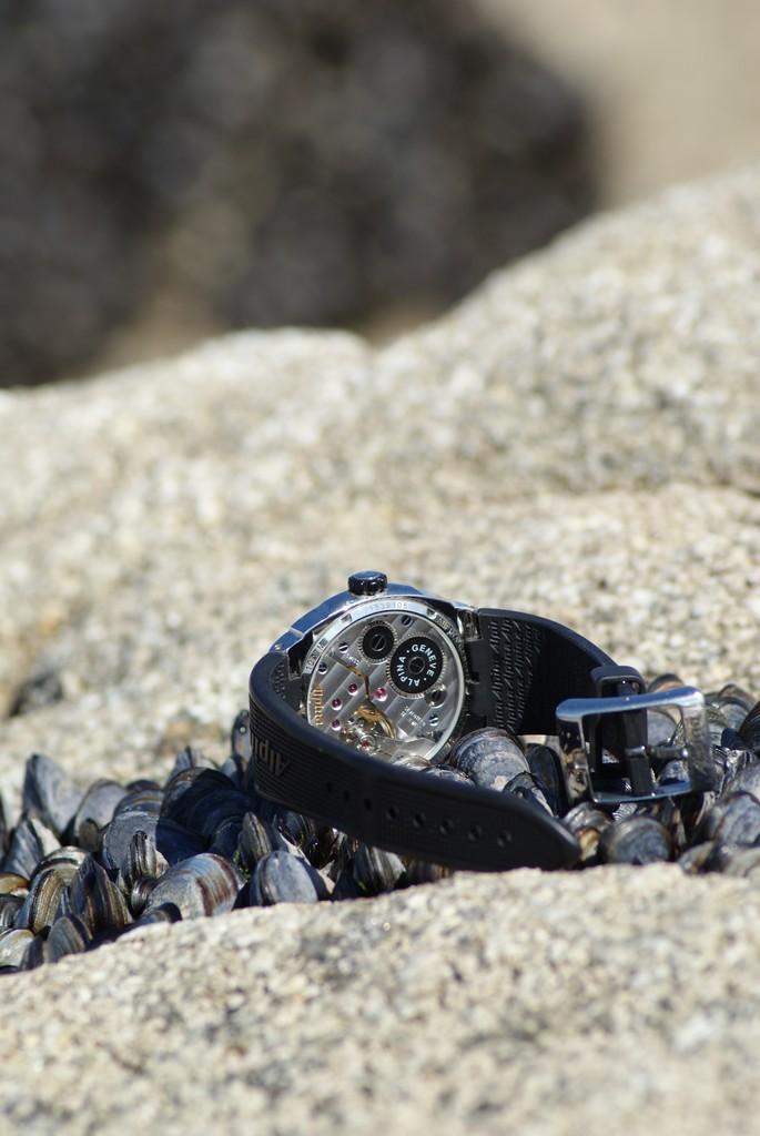 Alpina - montre alpina regulator Dsc00011