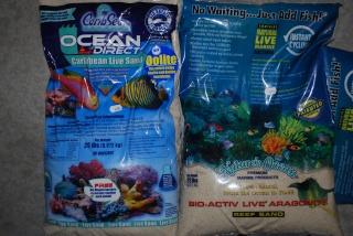 Le bac des Maniacodesrécifs (méthode Reefcorner) - Page 6 Dsc_0310
