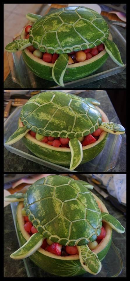 ........fai da te Melone10