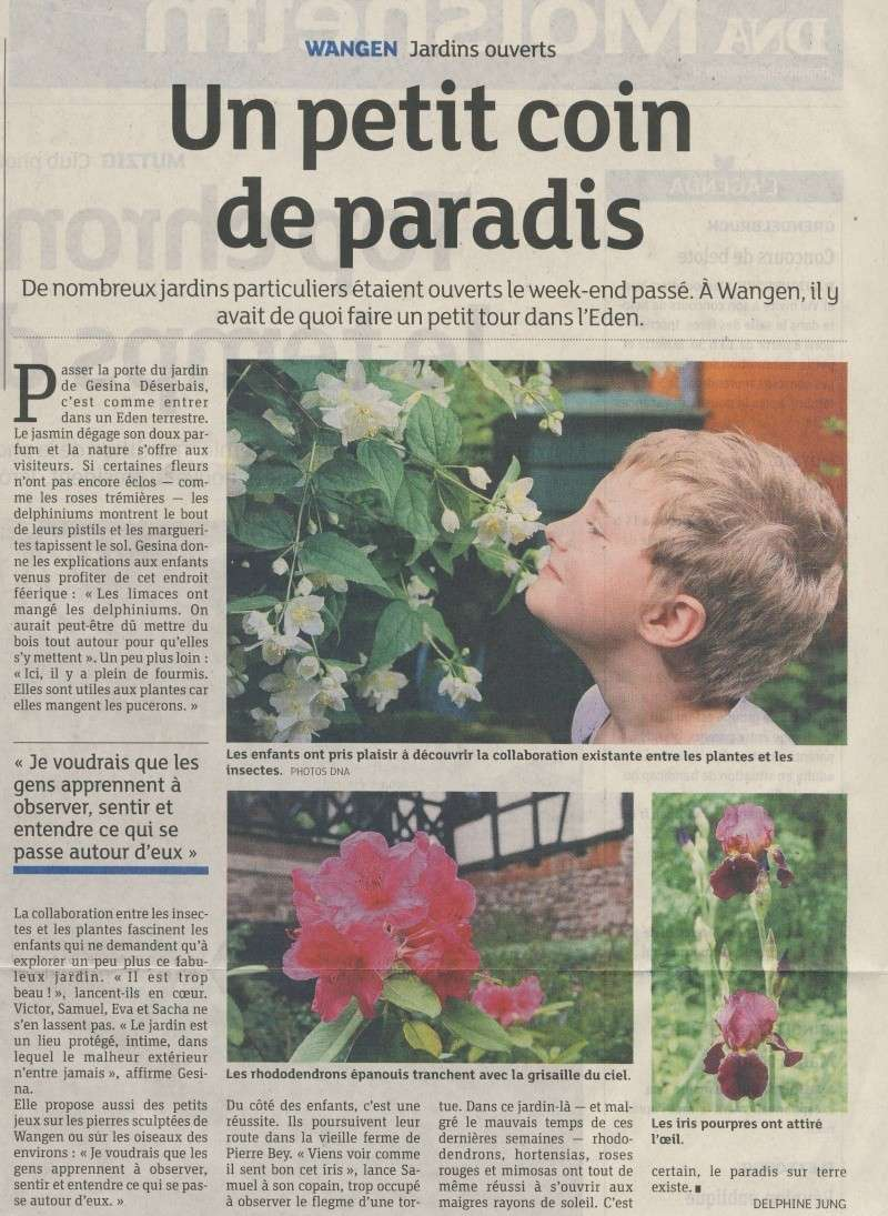 Rendez-vous aux jardins à Wangen samedi 1 er juin 2013 Image119