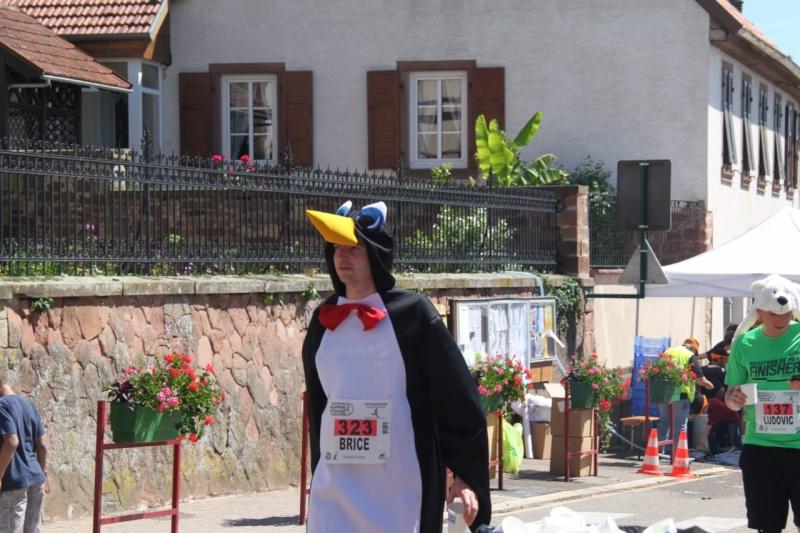 Le Marathon du Vignoble d'Alsace à Wangen le 16 juin 2013 Img_3716