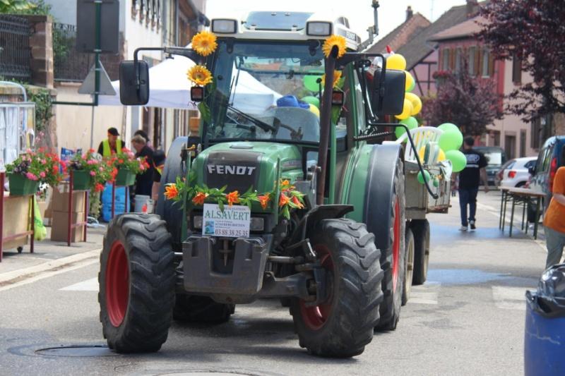Le Marathon du Vignoble d'Alsace à Wangen le 16 juin 2013 Img_3818