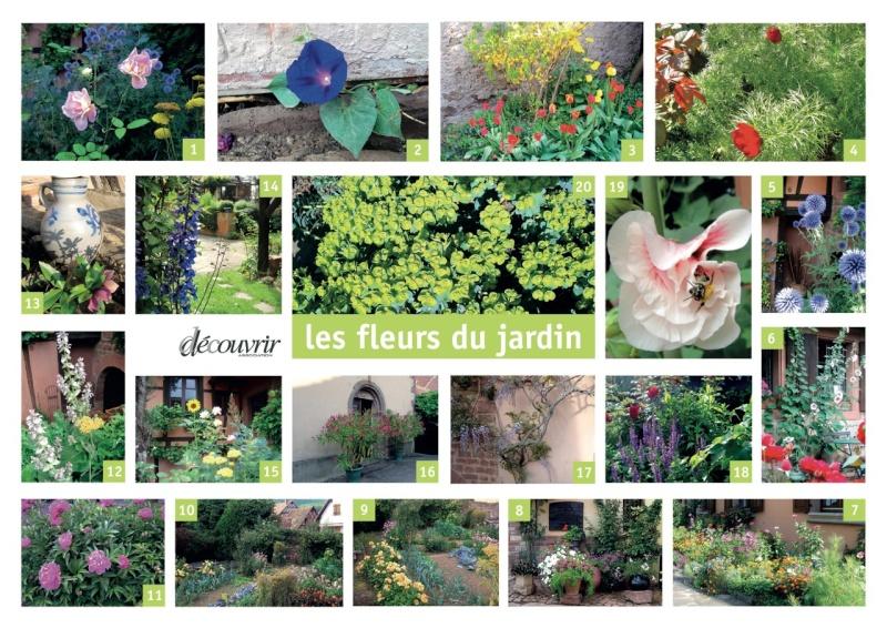 Rendez-vous aux jardins à Wangen samedi 1 er juin 2013 Montag11