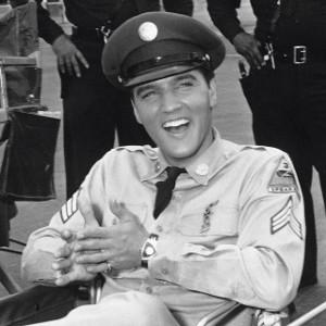 comme promis Hamilton ventura Elvis-10