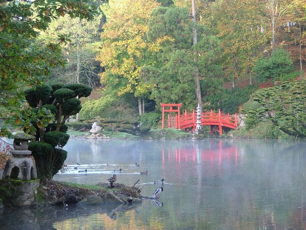 Jardins japonais Maulav11