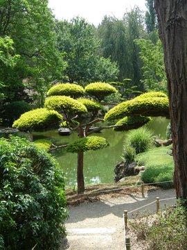 Jardins japonais Maulav12