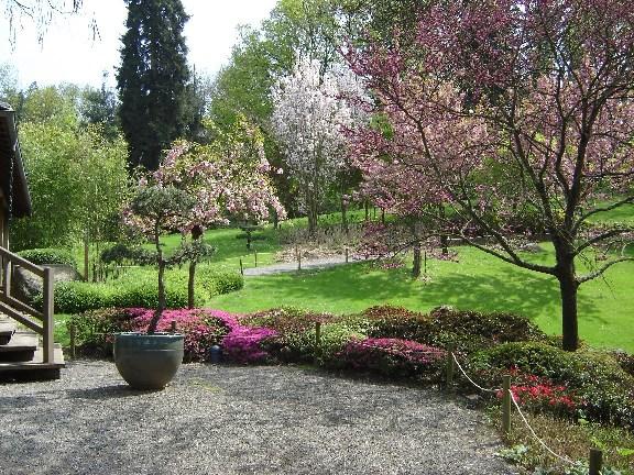 Jardins japonais Maulav13