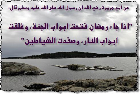 زاد المسلم في قيام ليل رمضان والاعتكاف M_1510