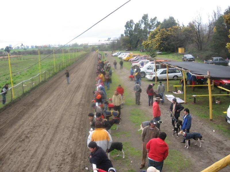 Grandes carreras y clásicos en Chillán para este domingo 27 Img_3910