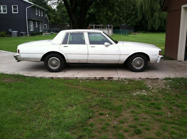 brought the Caprice home. Capw310