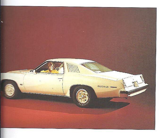 found a new book today,Cars of the 70's. pretty awsome Gaspoi10