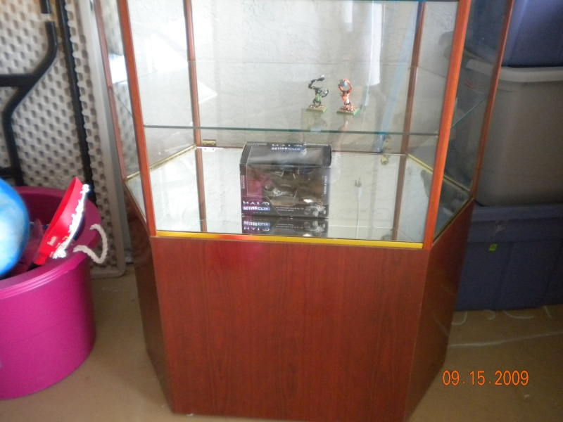 Display Case Pictur10